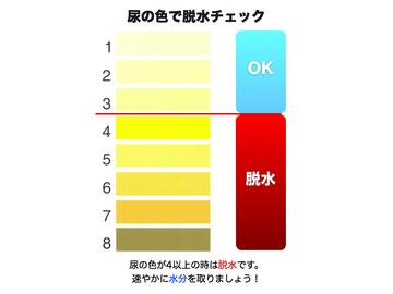 尿の色で脱水チェック.jpg