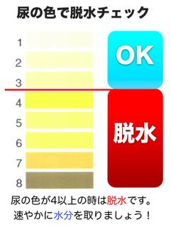 尿の色で脱水チェック.png